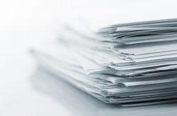 Zpráva kontrolní komise Svazu školkařů ČR za rok 2012