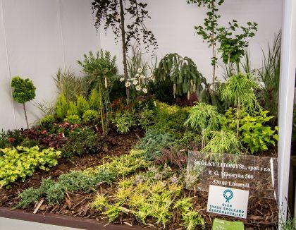 Jedlá zahrada = zahrada plná života / fotogalerie / IMG_6875